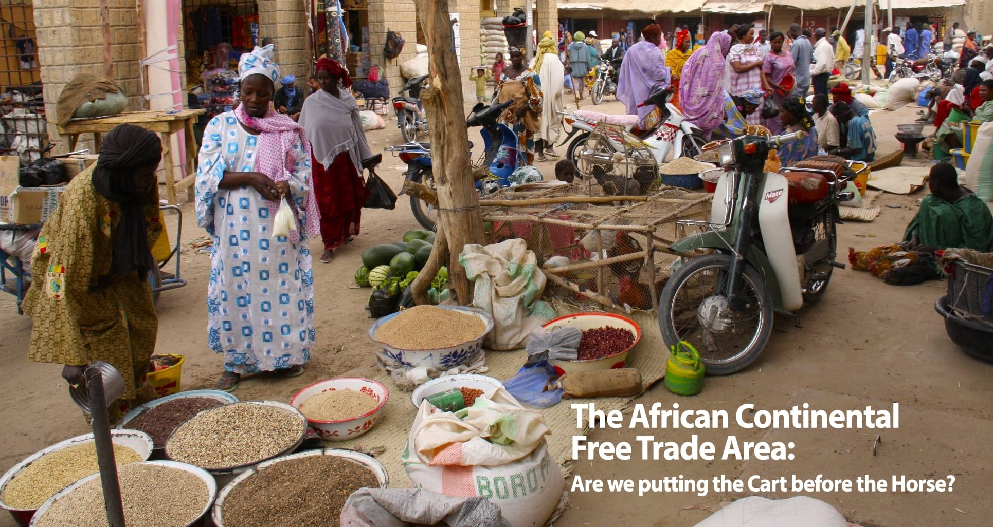 The African Continental Free Trade Area: Are we putting the Cart before the Horse?