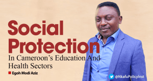 Social Protection in Cameroon's Education and Health Sectors