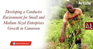 Developing a Conducive Environment for Small and Medium Sized Enterprise Growth in Cameroon