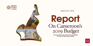 Report: Analysis of the 2019 Cameroon Budget