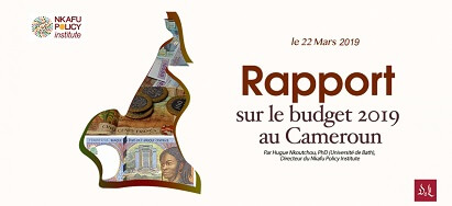 Report-on-Cameroon-2019-Budget_LIN-fr