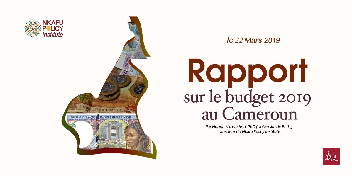 Rapport Sur Le Budget 2019 Du Cameroun