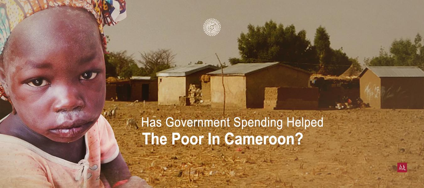 Nasumba_Is-Governement-Spending-Pro-Poor-website