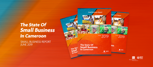State of Small Businesses in Cameroon Report 2019