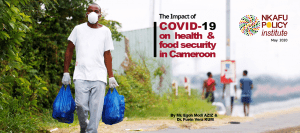 The impact of COVID 19 on health and food security in Cameroon