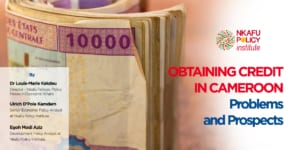 Obtaining Credit in Cameroon Problems and Prospects