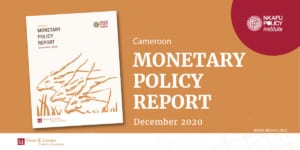Report On The Effects Of BEAC's Monetary Policy In Cameroon